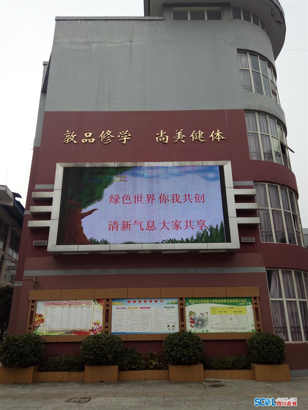 江东实验小学开展生态文明教育主题活动